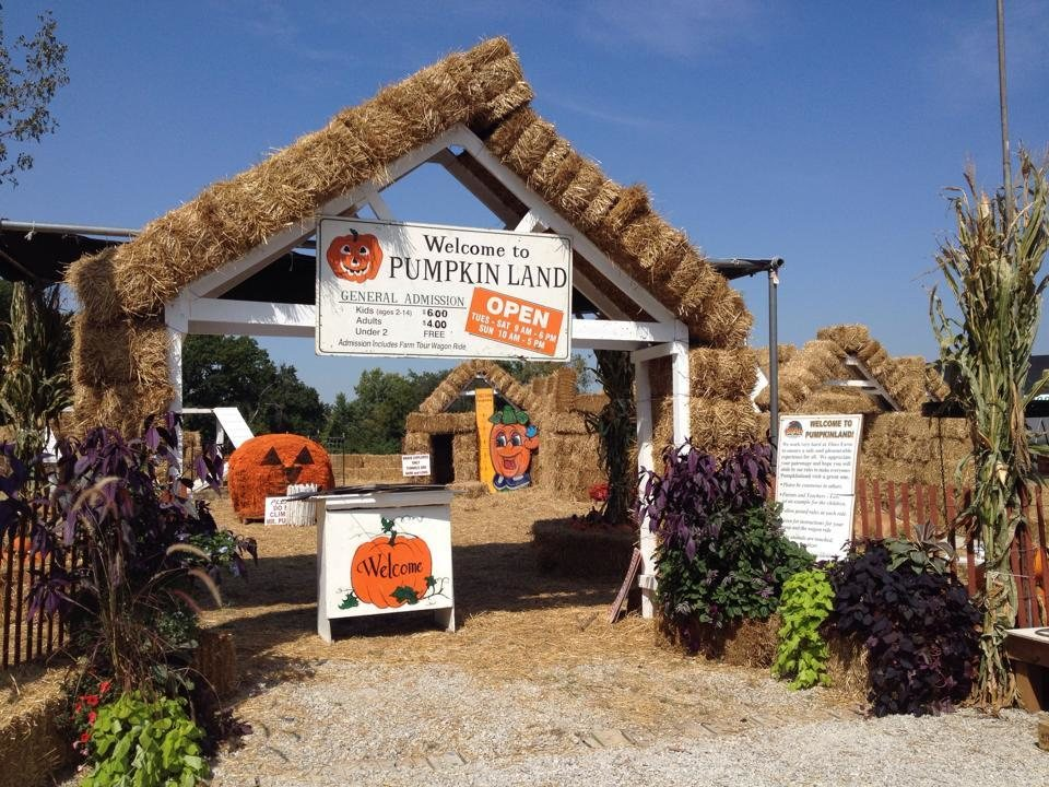 Pumpkinland at Thies Farm & Greenhouses in Saint Louis MO Saint Louis H